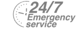 24/7 Emergency Service Pest Control in North Watford, WD24. Call Now! 020 8166 9746