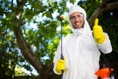 Pest Control in North Watford, WD24. Call Now 020 8166 9746